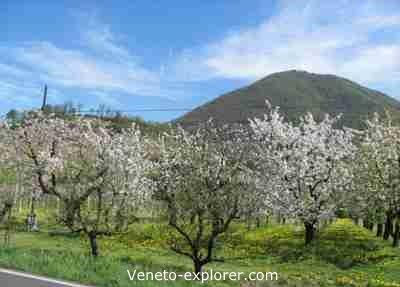 holiday in Veneto Italy